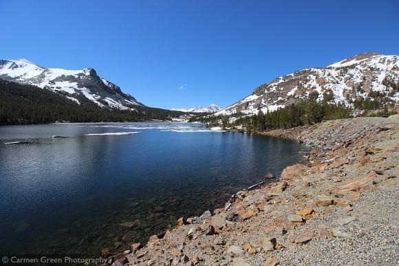 Tioga  Lake, Yosemite National Park